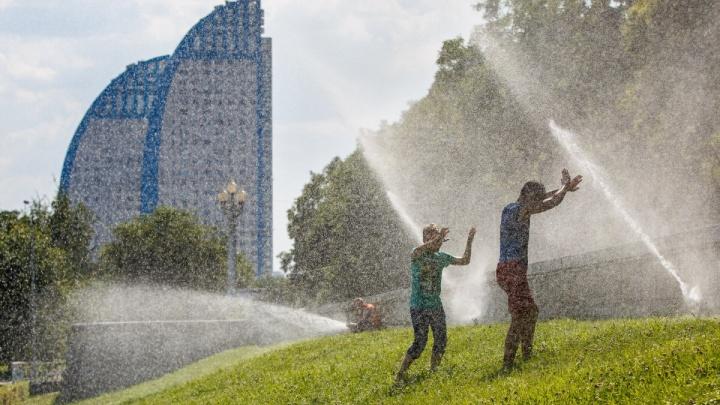В Волгоградской области установилась 32-градусная жара