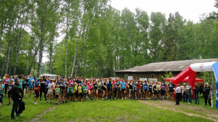 После забега — душ в лесу: сотни новосибирцев в шортах пробежали по Академгородку