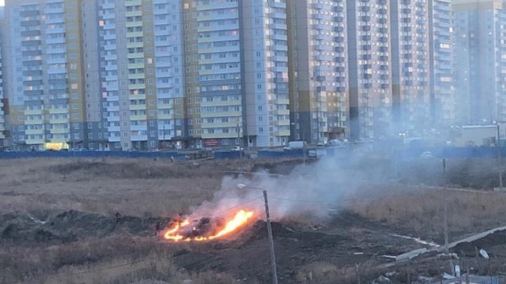 «Дети развлекаются»: первые поджоги травы в Красноярске заметили на полях в «Солнечном»