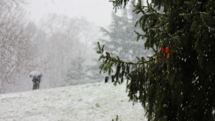 В выходные в Кургане обещают снег, плавно переходящий в дождь