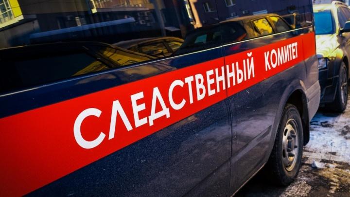Рожала дома: в сарае многодетной семьи на Южном Урале нашли мёртвого младенца