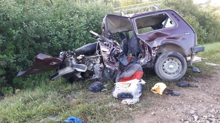 Ночью в Башкирии столкнулись «Лада-Гранта» и «Нива»: погибли оба водителя и пассажирка