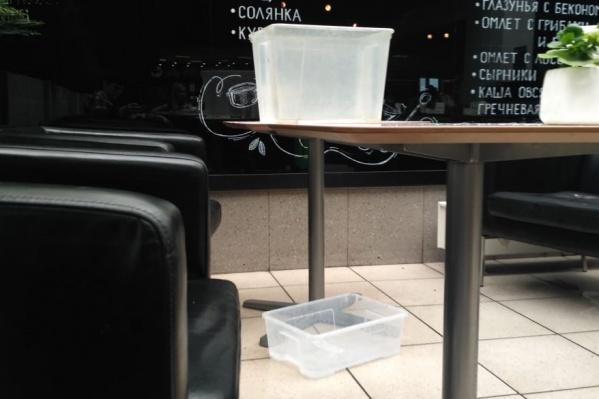 Работники кофейни подставили тазики, чтобы в них стекала вода