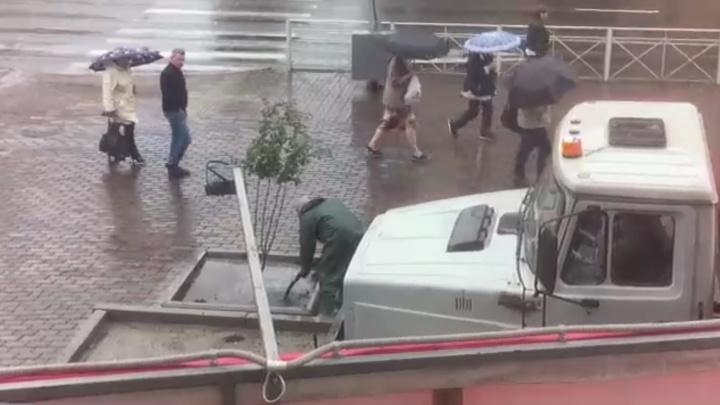 Видео: в центре Красноярска деревья поливали в дождь. В мэрии объяснили зачем
