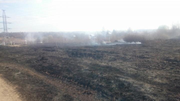 Под Нижним Новгородом произошел масштабный пожар: охвачены огнем 17 садовых домиков