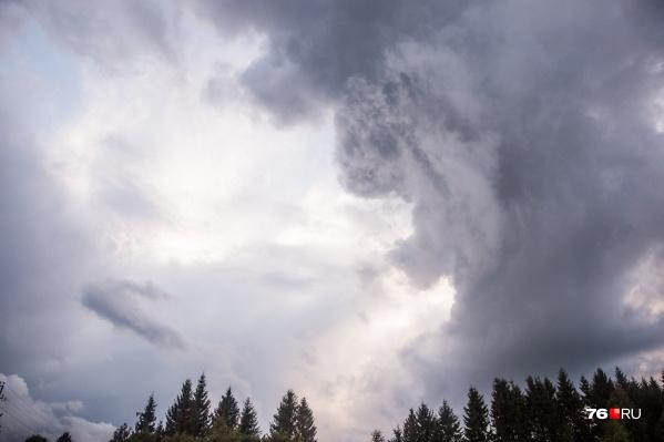Синоптики прогнозируют, что в Ярославле будет ветрено