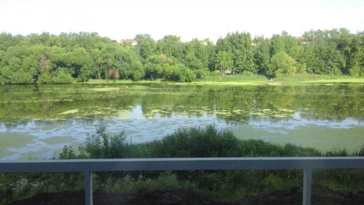 «Стройку ведут почти в воде»: возведение домов вблизи реки Миасс встревожило челябинцев
