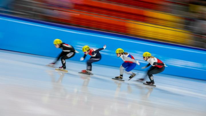 Лёд и скорость: подборка снимков с соревнований по шорт-треку