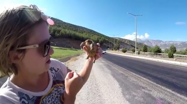 Екатерина Унгур и спасенная золотая греческая черепаха