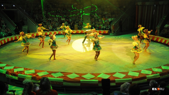 Про кадровые проблемы — в другой раз: в Екатеринбургском цирке начался фестиваль для детей-артистов