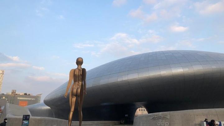«За голые плечи — обматерят»: 13 фактов о Южной Корее от ярославской путешественницы