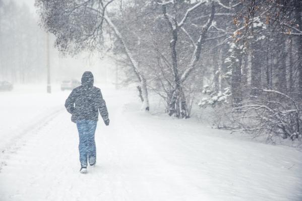 На этой неделе в Новосибирске обещают снег