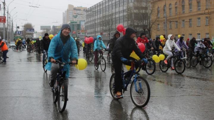 Ещё больше перекрытий: власти закроют Октябрьский мост во время Сибирского велопробега