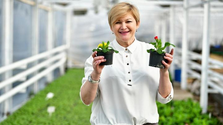 «Высадим цветы для автомобилистов»: как к лету украсят улицы Ярославля