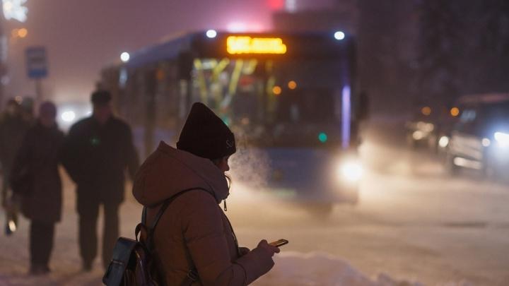 Одно приложение для всего: в Красноярске «Яндекс.Транспорт» объединился с «Картами»