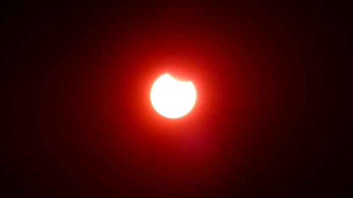 Тем, кто пропустил солнечное затмение: собираем фото небесного явления