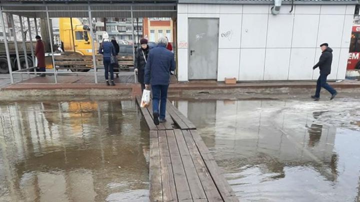 «Спасибо всем безответственным»: в Ярославле через гигантские лужи проложили мостки