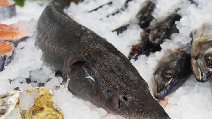 Рыбный магазин переехал из ГУМа в торговый центр «Гранит»