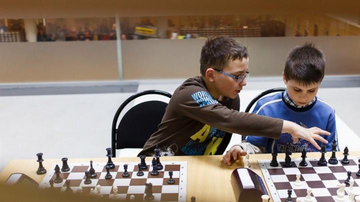 «Чемпион будет играть вслепую»: волгоградцев зовут на экстремальный шахматный турнир