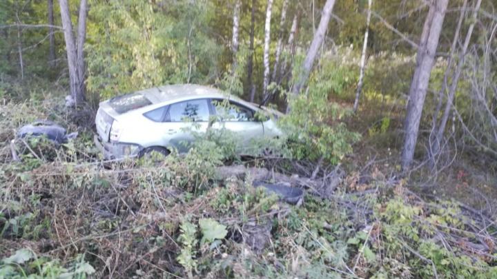 Водитель Toyota чудом уцелел после того, как снёс несколько деревьев под Новосибирском