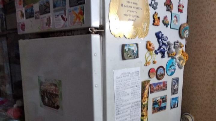Пожилая москвичка рассказала о красноярском холодильнике «Бирюса» и поблагодарила завод