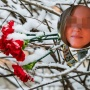 Не вышла даже из подъезда. Подробности по делу об убийстве 12-летней девочки в Лысьве