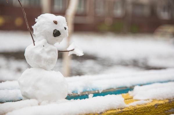 В Новосибирске ждут тёплую и снежную зиму