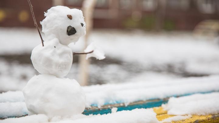 Будет много снега: синоптики дали предварительный прогноз на зиму