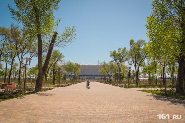 Стадион станет центром нового спортивного кластера