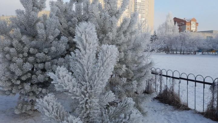 До 40 градусов мороза: в Кургане из-за аномальных холодов снова отменили занятия в школе