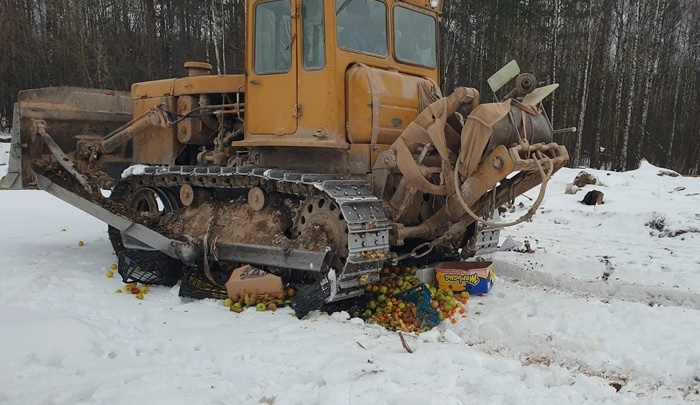 В Ярославле трактором раздавили 340 килограммов фруктов и овощей