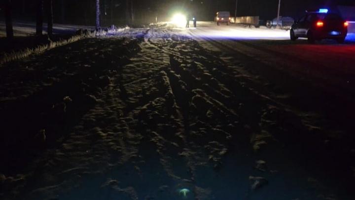 Сбил и скрылся: сотрудники ГИБДД ищут водителя, насмерть сбившего человека в Башкирии