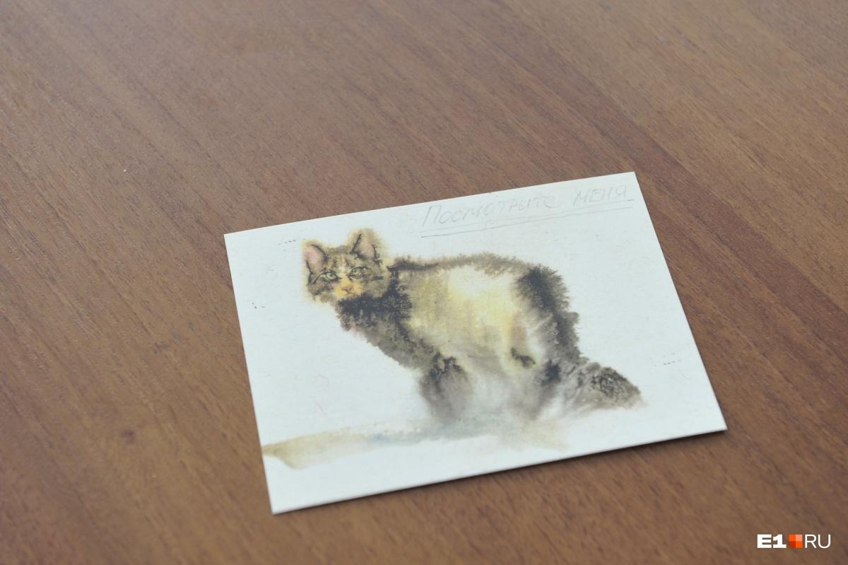 Студенты часто дарят преподавателю открытки с котиками