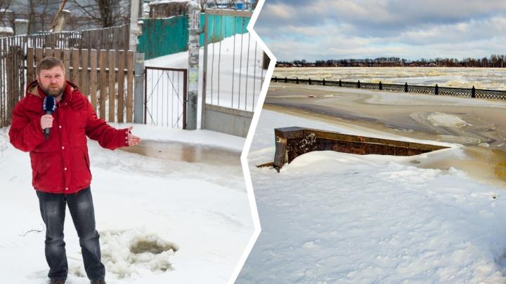 Волга вскрылась — дача накрылась: Ярославль ушёл под воду, а власти просят не паниковать. Видео
