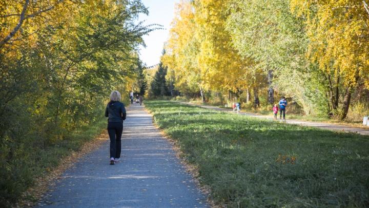 В Новосибирск придёт новое потепление