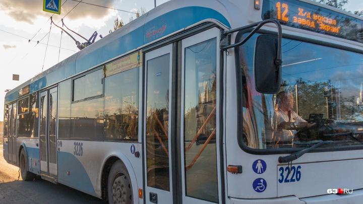 Областной Минтранс рассказал, почему в Южный город не будут запускать троллейбусы