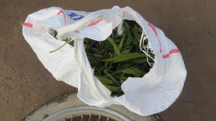 У молодого ужурца нашли пакет марихуаны. Ему грозит до 10 лет