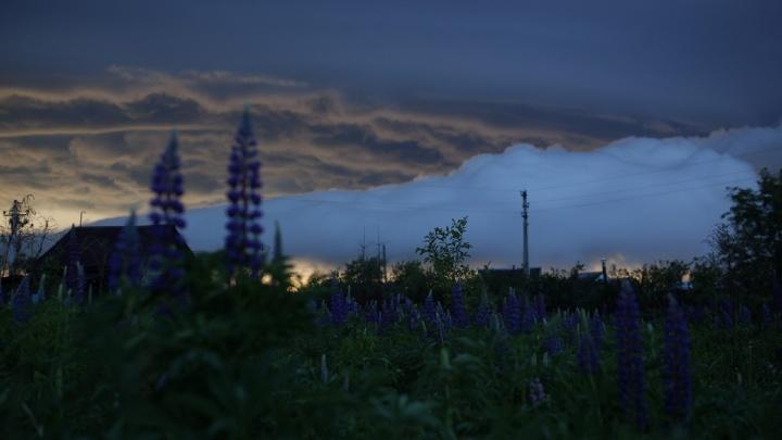 Похоже на апокалипсис: фотоподборка туч, затягивающих небо над Ярославлем