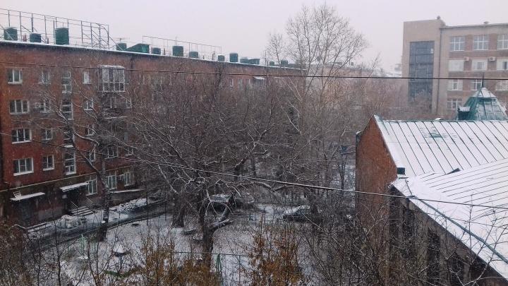 В Омске до конца рабочей недели будет идти снег