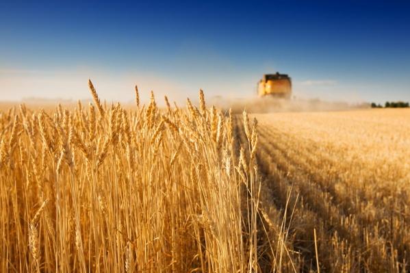 Сегодня перед аграриями страны стоит задача по двукратному увеличению экспорта продукции АПК