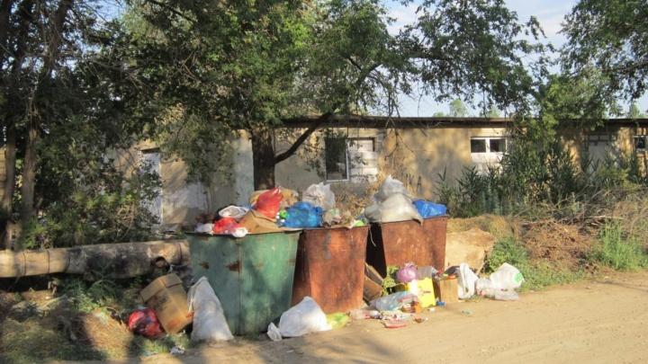 Ситуация — катастрофа: в поселке Гумрак закрылся мусорный полигон, целый район зарастает мусором