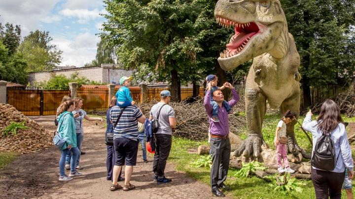 Юрский период в Ярославле: прогуливаемся по новому парку динозавров
