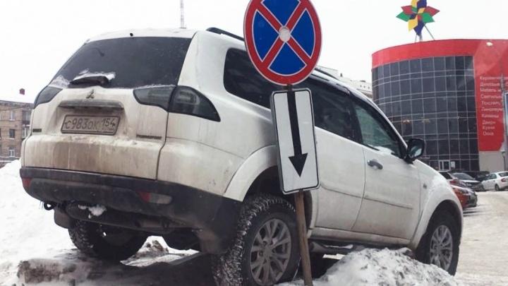 «Я паркуюсь как чудак»: чудак года (голосование)