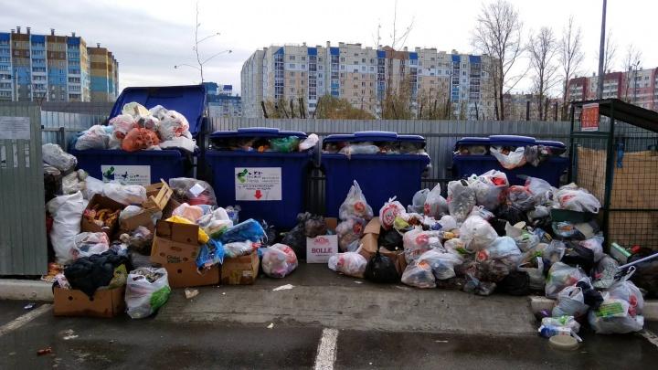 Из-за смертельной аварии с мусоровозами челябинские дворы оказались завалены отходами