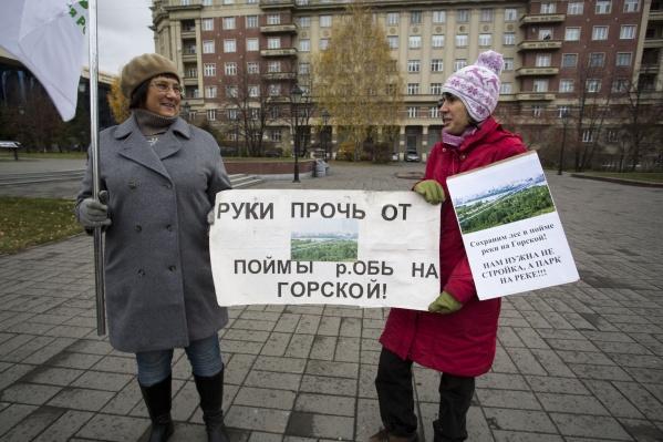 Активисты считают, что вместо нового ЛДС на Горской должна быть рекреационная зона