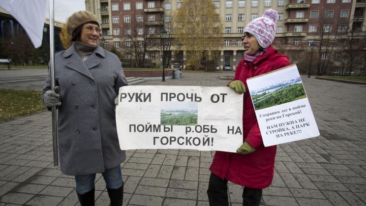 Активисты вышли на пикет против строительства ЛДС — они предлагают перенести его в аэропорт