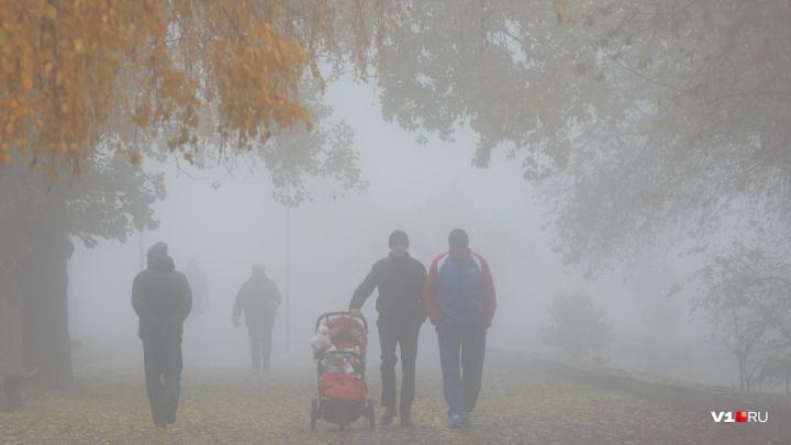 «Когда зима стучится в двери»: в Волгоградскую область придут туманы, морось и мороз -6 ºС