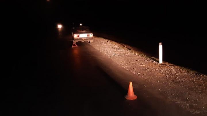 «Лада» сбила пешехода на ночной трассе под Новосибирском