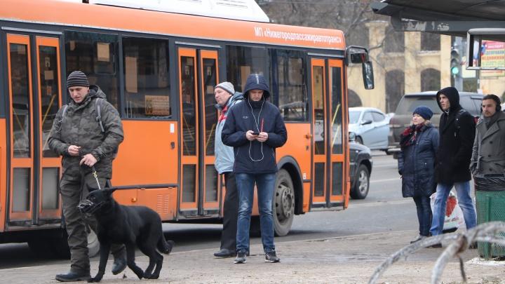 Колонка разгневанного пассажира: «Лезть через весь автобус к водителю за билетом? Кайф!»