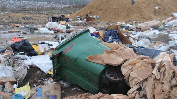 Внедрят ли раздельный сбор ТКО? В правительстве Поморья обсудили замечания северян по вывозу отходов